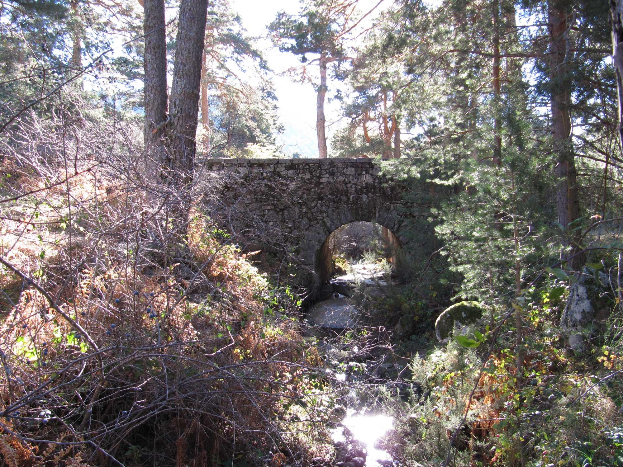 Barefoot Bridge